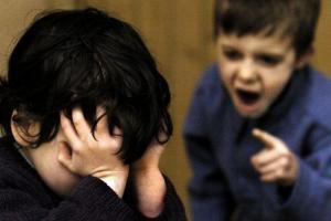 Bullying exclusion rise in Somerset