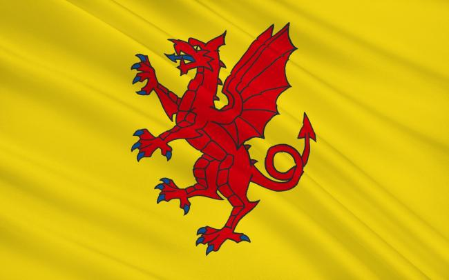 WRONG COLOUR?: The Somerset flag