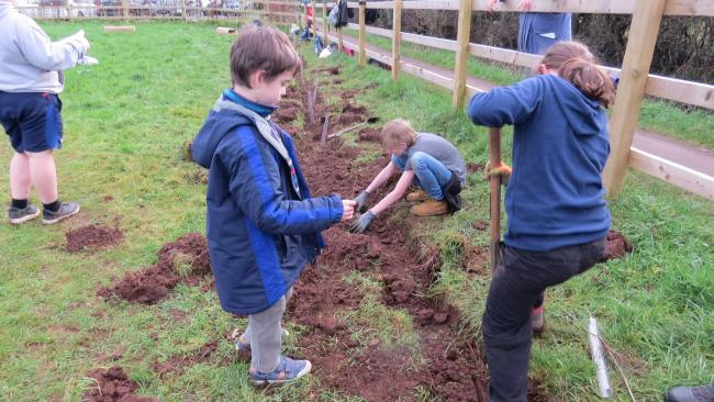 Wells Blue School pupils working on a conservation project funded by a Somerset Fund grant