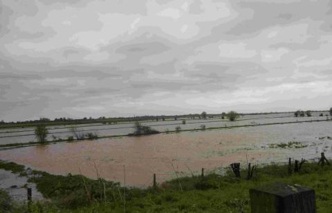 Burnham and Highbridge Weekly News: Flooding near North Curry, Taunton. Photo: stock image.