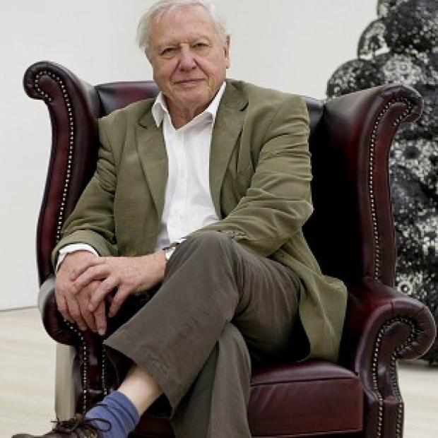 Burnham and Highbridge Weekly News: Sir David Attenborough will provide the commentary on BBC Two wildlife series Africa