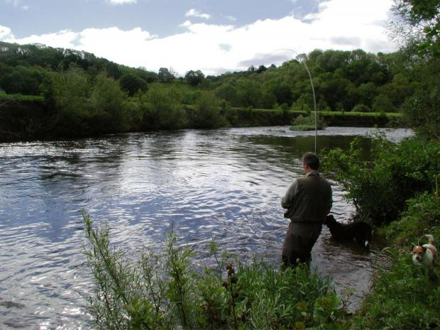 FISHING: Wessex report