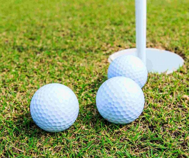 Burnham and Highbridge Weekly News: GOLF: Jones and Cooke storm to Presidents Day win