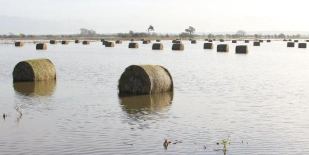 Somerset's farmers missing out on flood prevention cash, say MPs