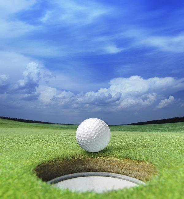 GOLF; Success at Bristol and Clifton for Brean Duo