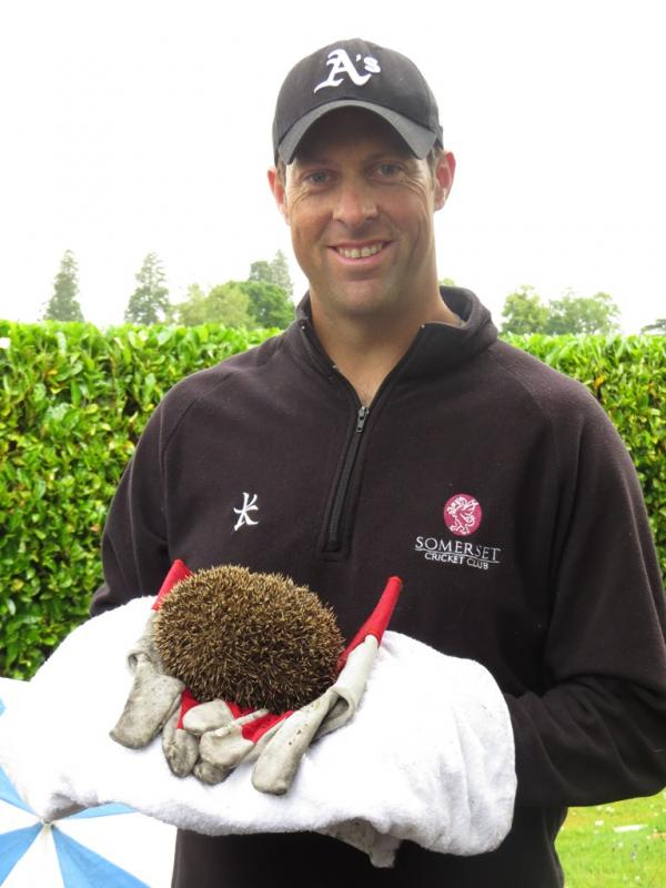 Quick-thinking Somerset cricketer Marcus Trescothick helps save trapped hedgehog
