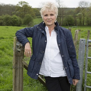 Julie Walters discovered her ancestor was guilty of assault