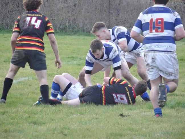 THUMPING WIN: Action from Burnham-on-Sea 2nd XV's big victory over Bridgwater & Albion 2nds. Pic: Sally Flack
