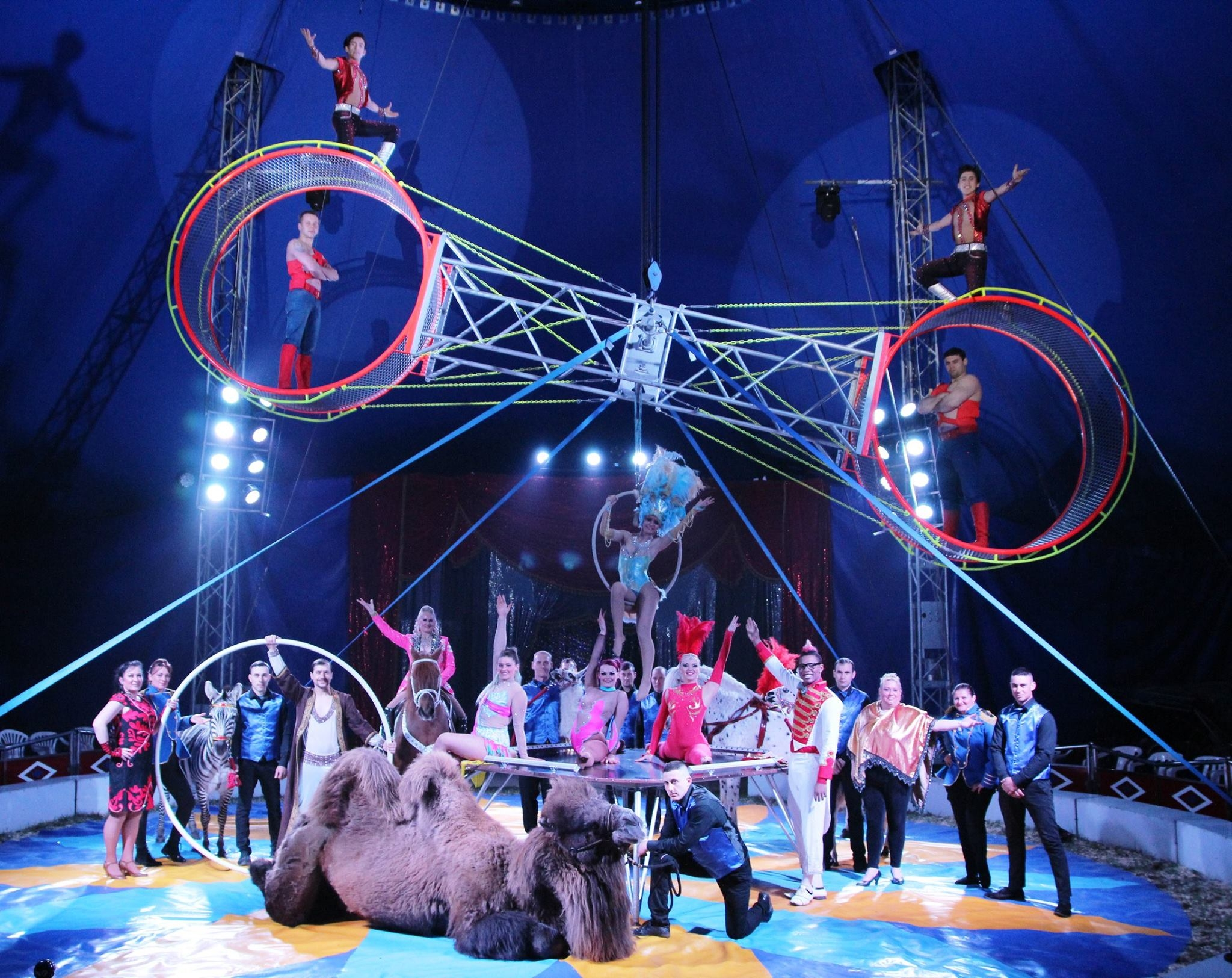 PERFORMING: Circus Mondao will be performing at The Oaktree Arena in Highbridge this week