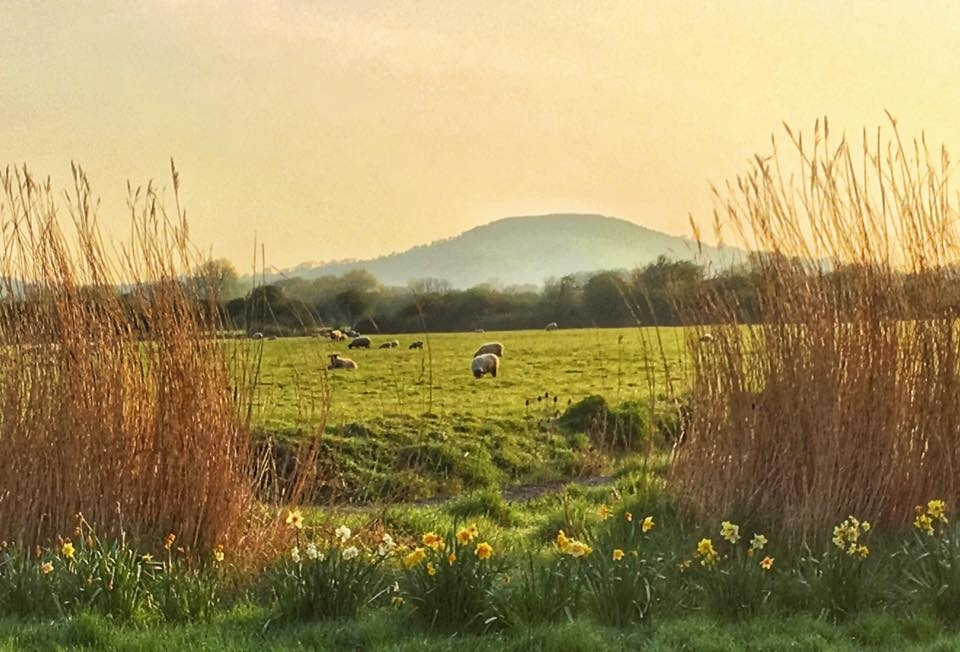 WEATHER: Somerset Camera Club member Sue Price took this beautiful shot of the countryside near Glastonbury Tor