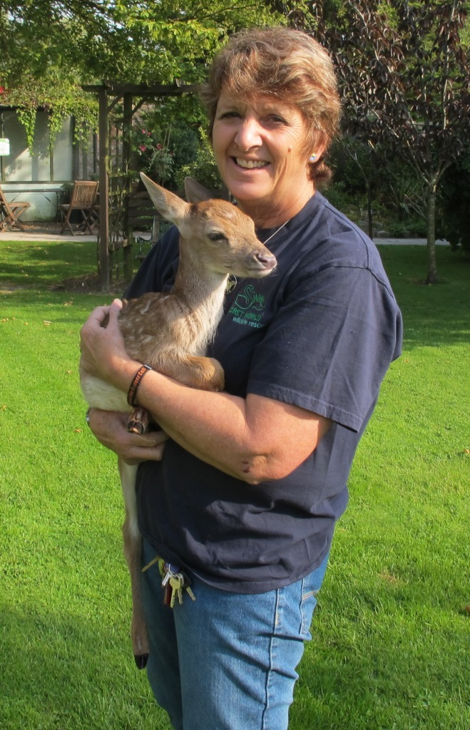 APPEAL: Secret World Wildlife Rescue founder Pauline Kidner